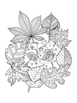 f2db4b22e65ee6 Fototapeta Drzewo pozostawia kolorowania ilustracji wektorowych książki