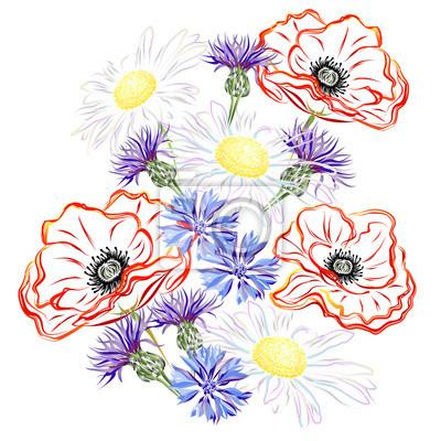 2a32c3a98f0952 Fototapeta Dzikie kwiaty. Wektor szczotka szkic chaber, Daisy i kwiatów  maku na kartki.