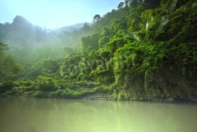 Fototapeta Dżungli w Wietnamie