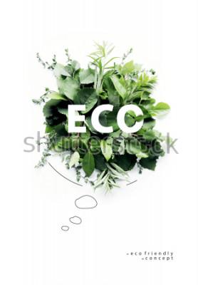 Fototapeta Ekologiczny planeta plakat. Symboliczny bąbelek, wykonany z zielonej trawy i gałęzi. Koncepcja minimalnej przyrody. Natura mówi Think Green. Pojęcie ekologii. Leżał płasko. Widok z góry.