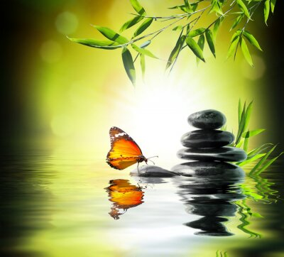 Fototapeta Ekskluzywny delikatny koncepcja - motyl na wodzie w ogrodzie
