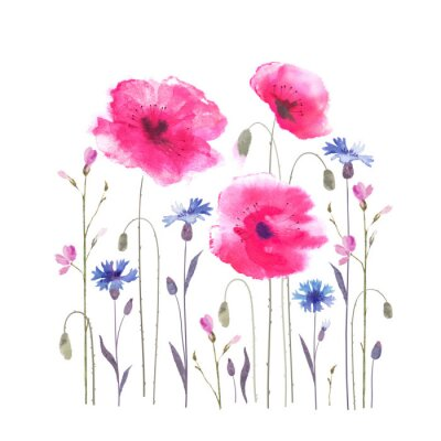 Fototapeta Floral glade with poppies and cornflowers.