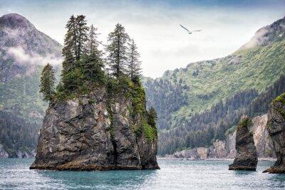 Fototapeta Foggy Day, Kenai fiordy National Park, Alaska, USA