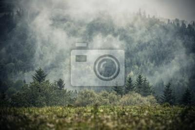 Fototapeta Foggy Hills Krajobrazu