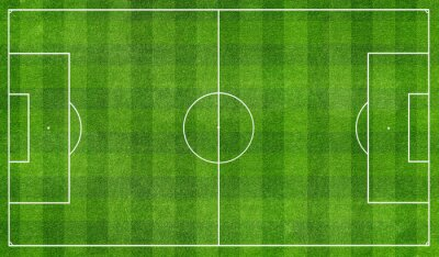 Fototapeta football  field top view
