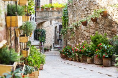 Fototapeta Fotografia z Orton efektu ulicy ozdobione roślinami i kwiatami w zabytkowym włoskim mieście Spello (Umbria, Włochy)