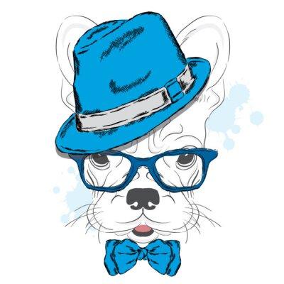 Fototapeta French Bulldog wektorowych. Cartoon szczeniaka. Pies w kapelusz i okulary przeciwsłoneczne. Słodki szczeniaczek. Hipster. Chłopak. Rodowód psa.