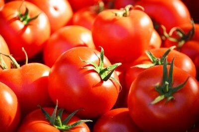 Fototapeta Fresh organic tomatoes on the street stall