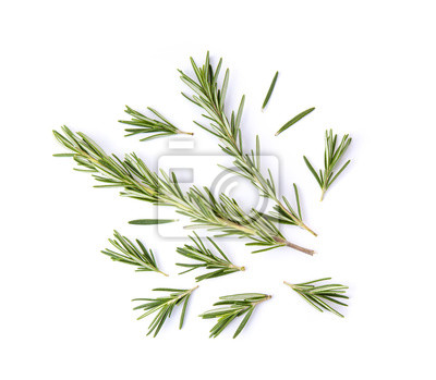 Fototapeta fresh rosemary isolated on white background. Top view