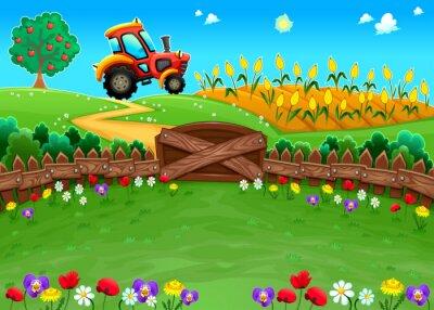 Fototapeta Funny krajobraz z ciągnika i kukurydzy.
