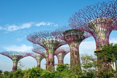 Fototapeta Gardens by the Bay, Singapur