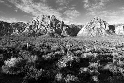 Fototapeta Geologia Formacje skalne Red Rock Canyon w Las Vegas USA