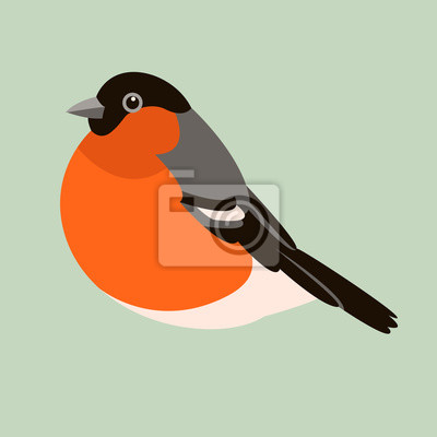 Gil Ptak Wektor Ilustracja Płaski Profil Fototapeta Fototapety Gil