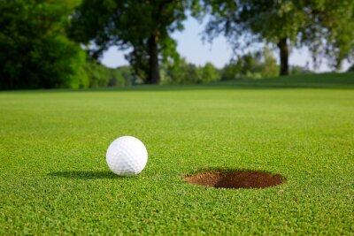 Fototapeta Golf ball on the green