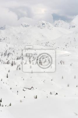 Fototapeta Górski domek otoczony śniegu