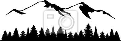 Fototapeta Górski krajobraz z jodłowego lasu