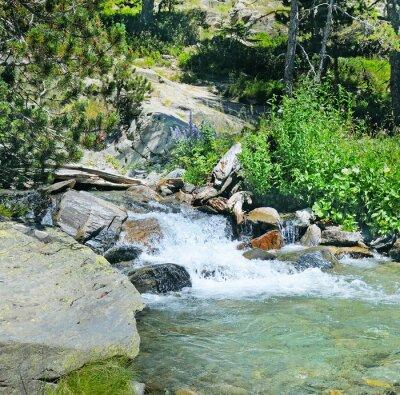 Fototapeta górskich rzek i lasów iglastych