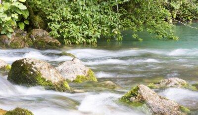 Fototapeta Górskie rzeki w Abchazji, krajobraz. Oczyścić przepływów rzek w górach Abchazji.