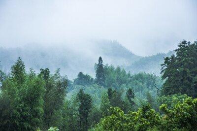Fototapeta Góry dekoracje w deszczu i mgle