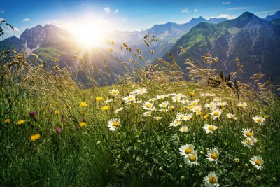 Fototapeta Góry krajobraz w Vorarlbergu