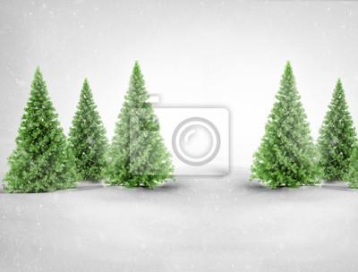 Fototapeta Green pine trees in snowy landscape