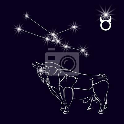Fototapeta Gwiazdozbiorze Byka Realistyczne Gwiazdą Biały Byk Znak Zodiaku