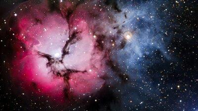 Fototapeta Gwiazdy mgławica w przestrzeni kosmicznej. Elementy tego zdjęcia dostarczone przez NASA