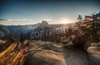 Fototapeta Half Dome i Dolina Yosemite w Yosemite National Park podczas kolorowe słońca i starych pniach drzew