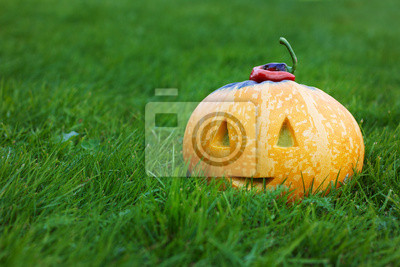 Fototapeta halloween funny pumpkin with a smile in autumn green grass