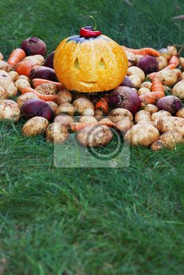 halloween funny pumpkin with autumn harvest