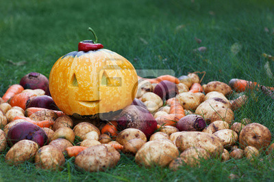 Fototapeta halloween funny pumpkin with autumn harvest
