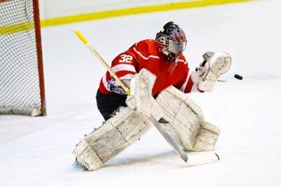 Fototapeta Hokej bramkarz w ogólnych czerwonego sprzętu chroni bramę