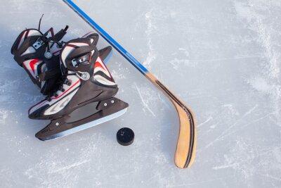 Fototapeta Hokej na lodzie.