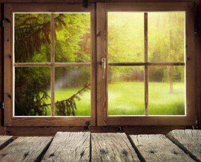 Fototapeta Holzhütte mit Ausblick auf eine Waldlichtung im Frühling / Frühsommer bei Sonnenschein
