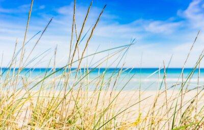 Fototapeta Idylliczne Plaża Reszta przerwa