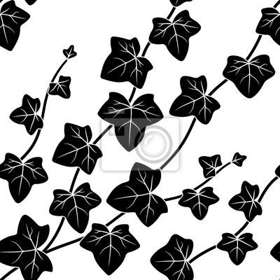 Fototapeta ilustracji wektorowych bez szwu wzór, czarne i białe dekoracyjne gałęzie z liśćmi bluszczu