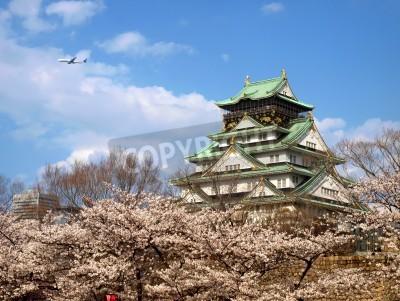 Fototapeta Japanese ancient castle with Sakura blossom
