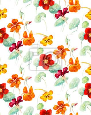 0da64fc3f93a83 Fototapeta Jednolite wzór z nasturcji. Kwiat kwiaty na białym tle. Akwarele  ręcznie rysowane ilustracji