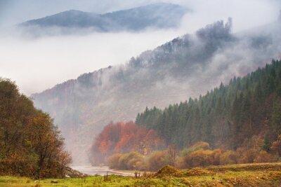 Fototapeta Jesień deszcz i mgła w górach. Kolorowy jesień lasowy tło