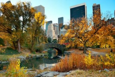 Fototapeta Jesień w Central Parku i budynki na Manhattanie w Nowym Jorku