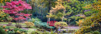 Fototapeta jesień w parku japoński, panorama