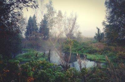 Fototapeta Jesienią krajobraz z lasu rzeki