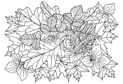 Jesienne Liście W Czerni I Bieli Doodle Sztuki Dla Kolorowanka