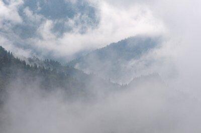 Fototapeta Jesienny krajobraz z mgłą w lesie górskim