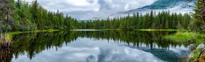 Fototapeta Jezioro w pobliżu Mendhenall Glacier ogromnym krajobraz
