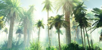Fototapeta Jungle in the fog, palm trees in the morning in the haze, rays of light in the palm trees, 3D rendering