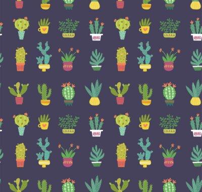 Fototapeta kaktus wzór