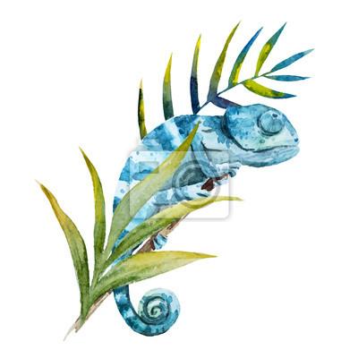 Niebieski kameleon