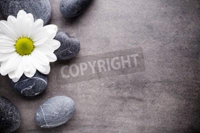 Fototapeta Kamienie Spa z kwiatem