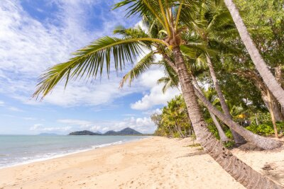 Fototapeta Karaibska plaża